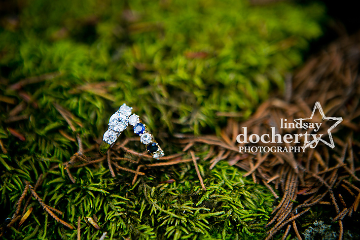 New Hope Holly Hedge Estate Wedding photographer