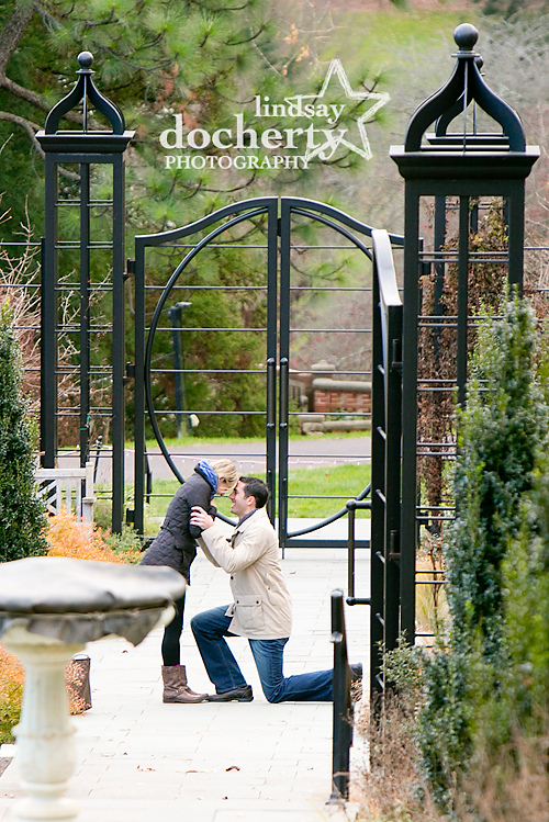 Proposal in Philadelphia Morris Arboretum