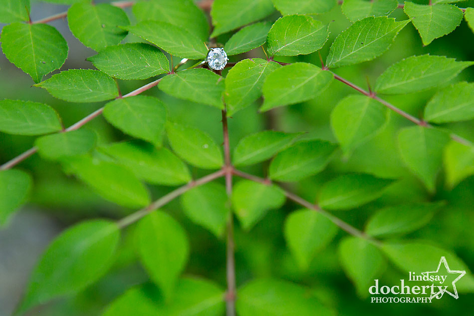round diamond engagement ring on bright green leaves