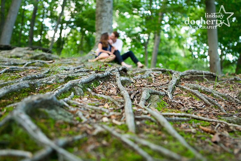engagement session in Philadelphia's Wissahickon Park with tree roots