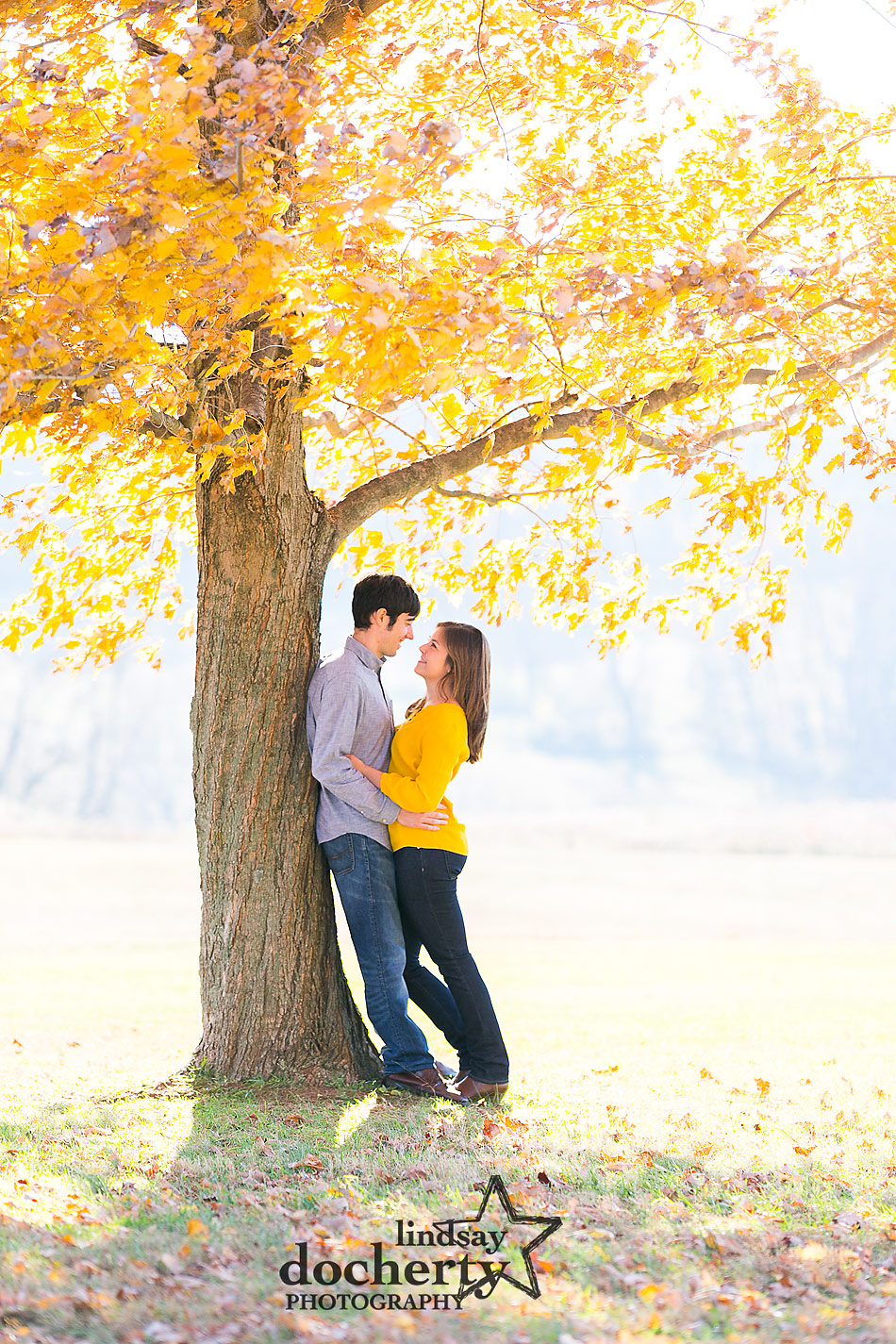 fall-engagement-session-in-Brandywine-Park-in-Delaware-with-yellow-tree