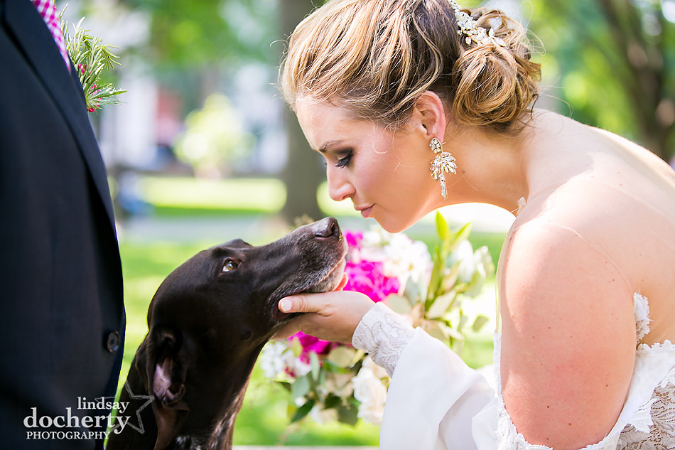 Philadelphia wedding photographer at Morris House Hotel with bride and German Shorthair Pointer dog