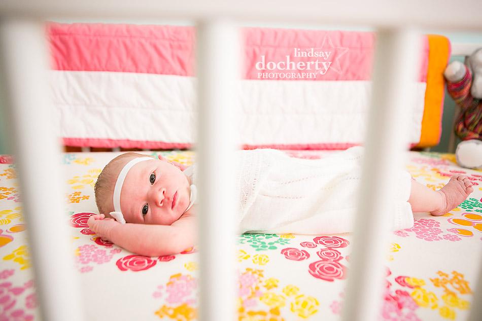 newborn baby girl in pink flower crib