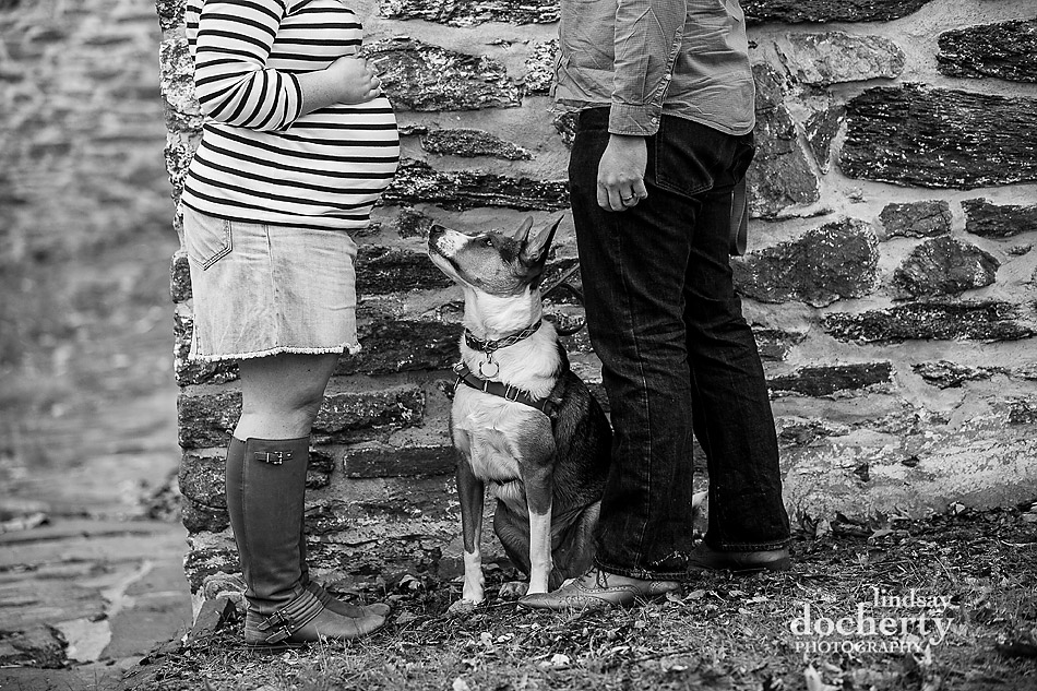 outside maternity photography session with dog in Philadelphia