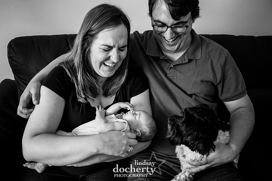 Newborn photography session with dog in Chestnut Hill