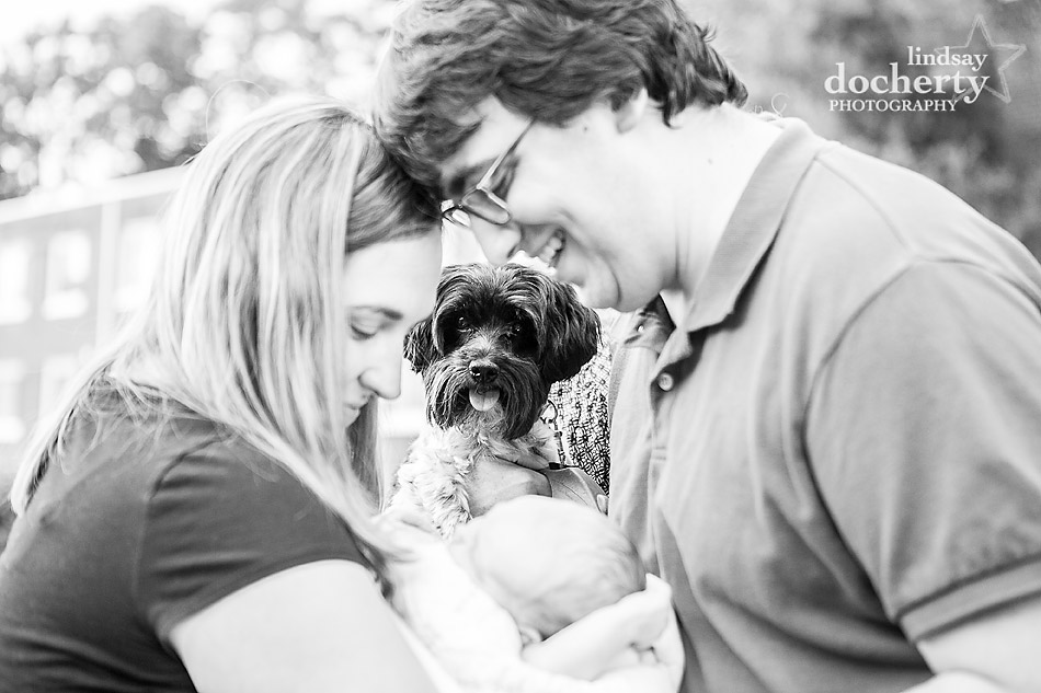 funny dog with newborn baby picture with parents