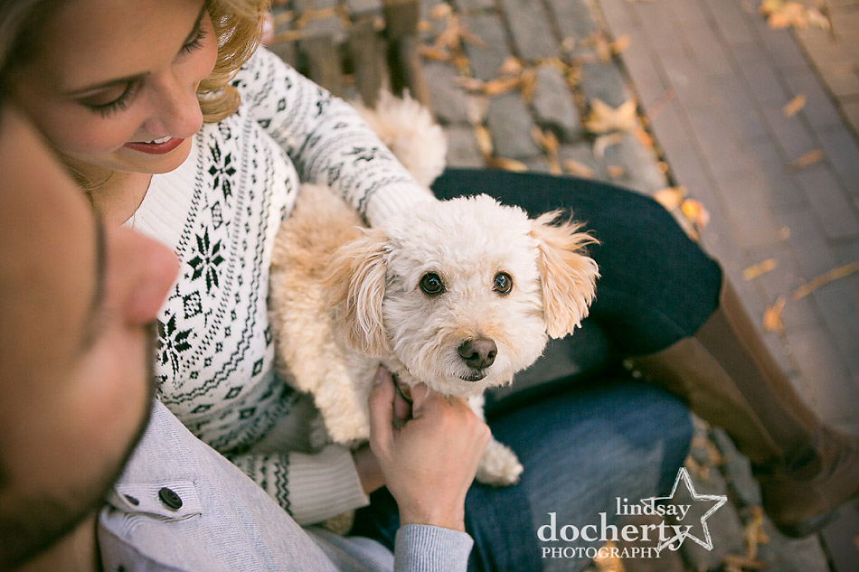 cute-white-dog-in-engagement-session-in-rittenhouse-square