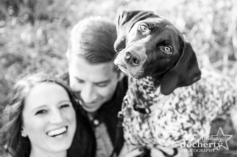monochrome dog in engagement session at Ridley Creek State Park