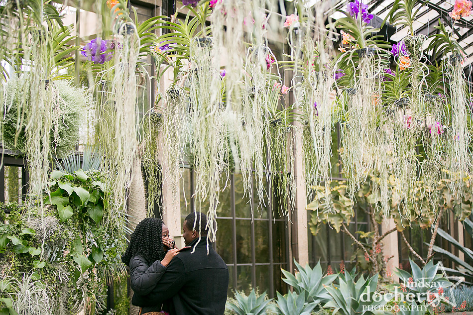 proposal in Silver Garden at Longwood Gardens