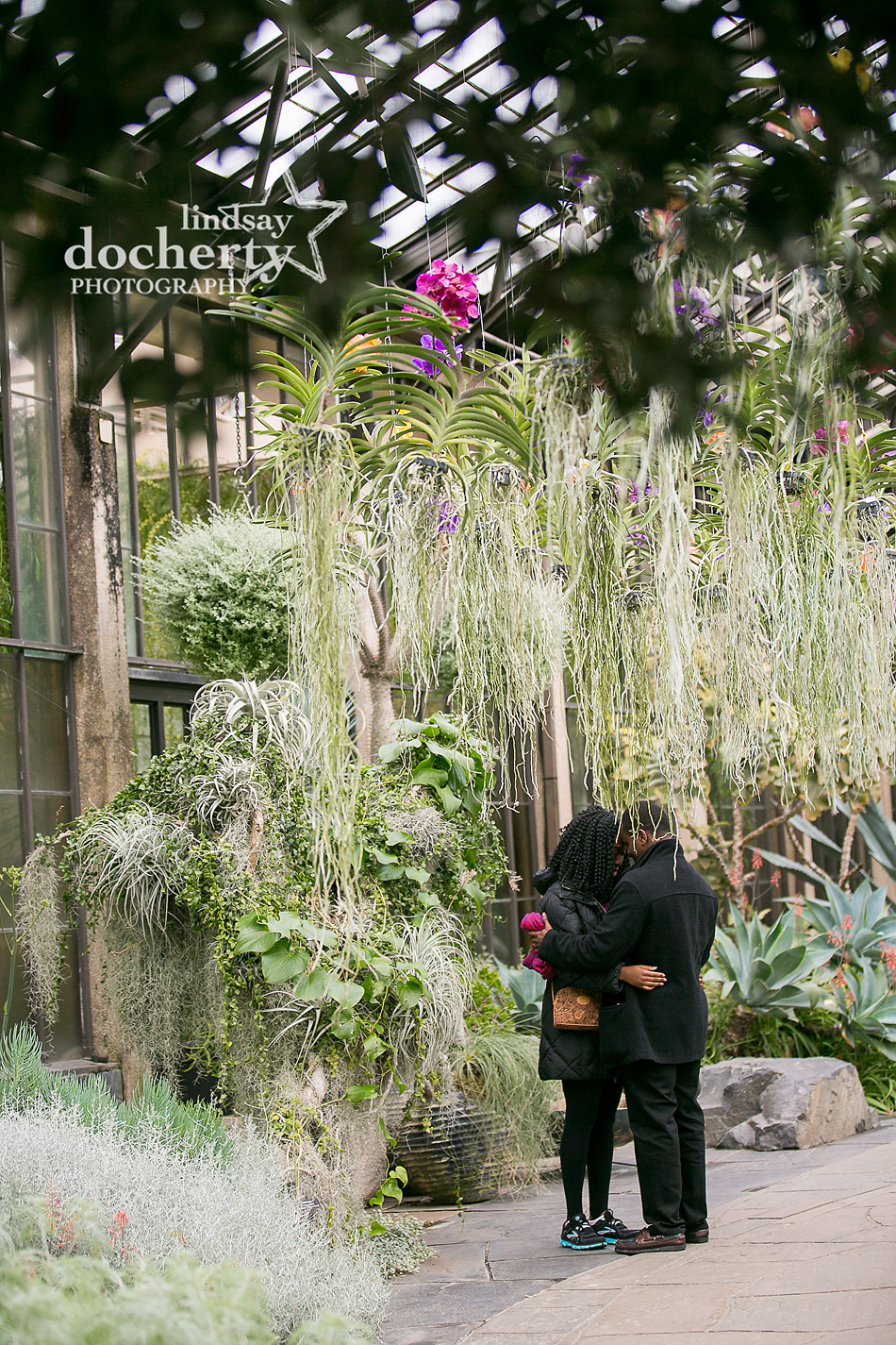 proposal and engagement session ar Longwood Gardens