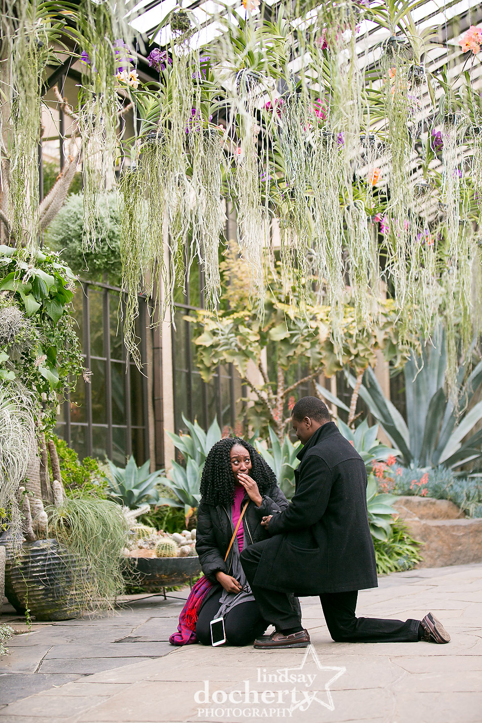 surprise proposal in Silver Garden at Longwood Gardens