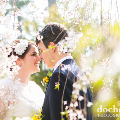 Romantic cherry blossom picture with bride and groom at Aldie Mansion