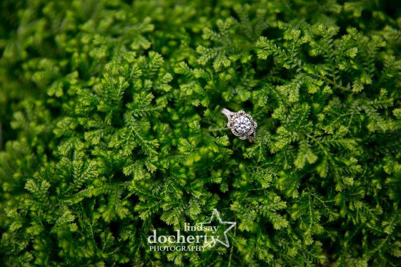 Verragio diamond engagement ring on bed of greenery